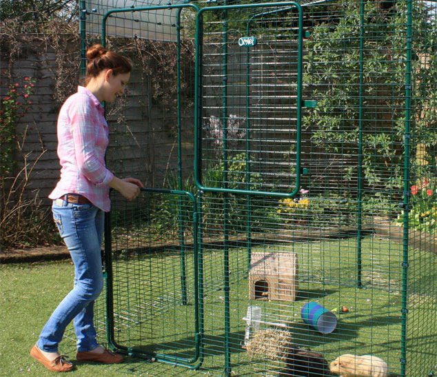 The Hi-Rise Outdoor Guinea Pig Run has a full height stable door making it easy to throw in some treats.