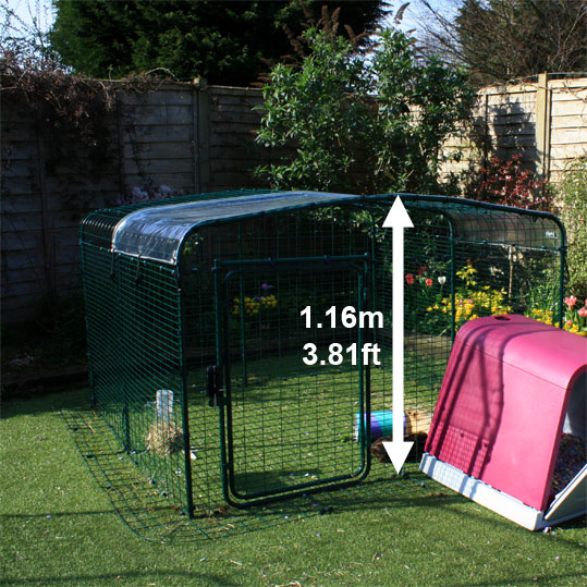 The Lo-Rise Outdoor Rabbit Run has plenty of floor space and the height can be extended at a later date.