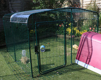 A Clear Cover for your run roof will keep pet guinea pigs dry while letting in sunlight.