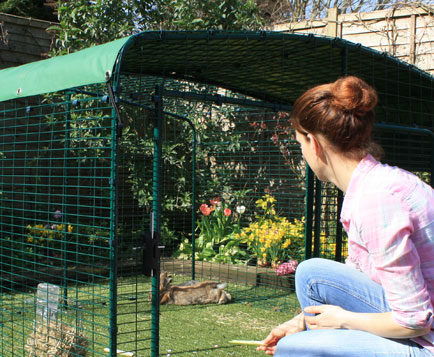 The Low-Rise Outdoor Rabbit Run has a large door, giving easy access to your pet bunnies.