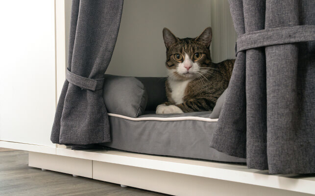 A cat laying on the cat bed inside the Maya Nook cat house