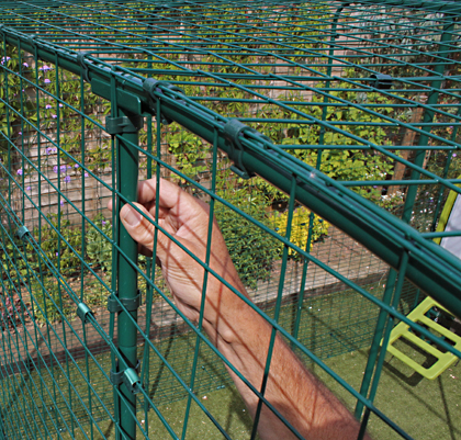 Close up of the steel mesh that makes up the Outdoor Cat Run.