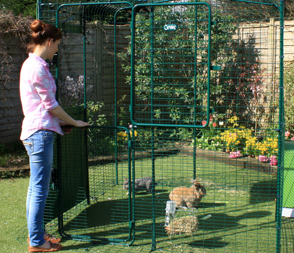 The Hi-Rise Outdoor Rabbit Run has a full height stable door making it easy to throw in some treats.