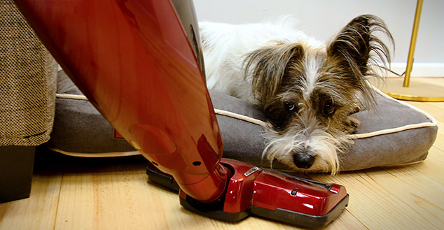 The Fido Nook protects your dog from drafts, bumps and unwanted disturbances