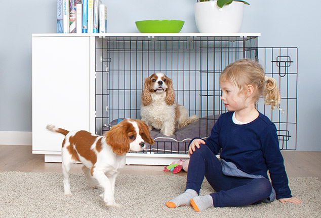 The Fido Studio is ideal for puppies and fully grown dogs