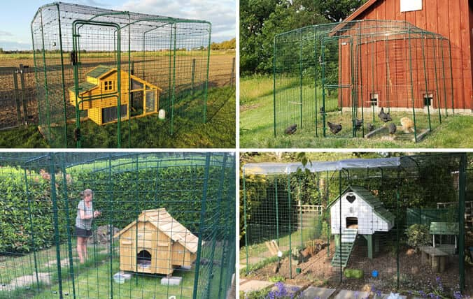 Wooden chicken coops with the Walk In Run.