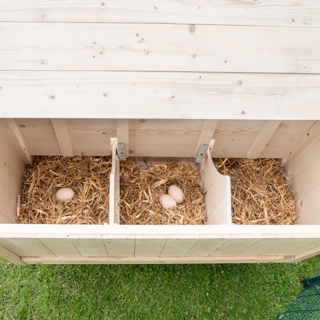 Collect your hens' fresh eggs without having to open up the coop thanks to the hinged lid.