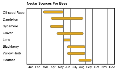 Source_of_nectar_for_bees