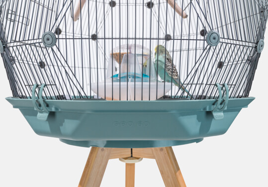 The Geo Bird Cage on a wooden stand with a teal colored base