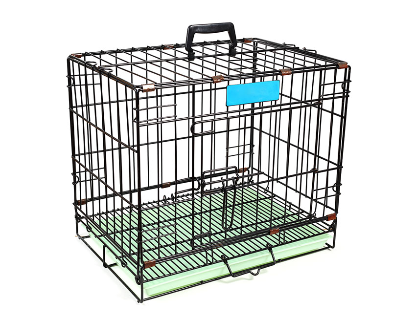 A budgie carrier cage