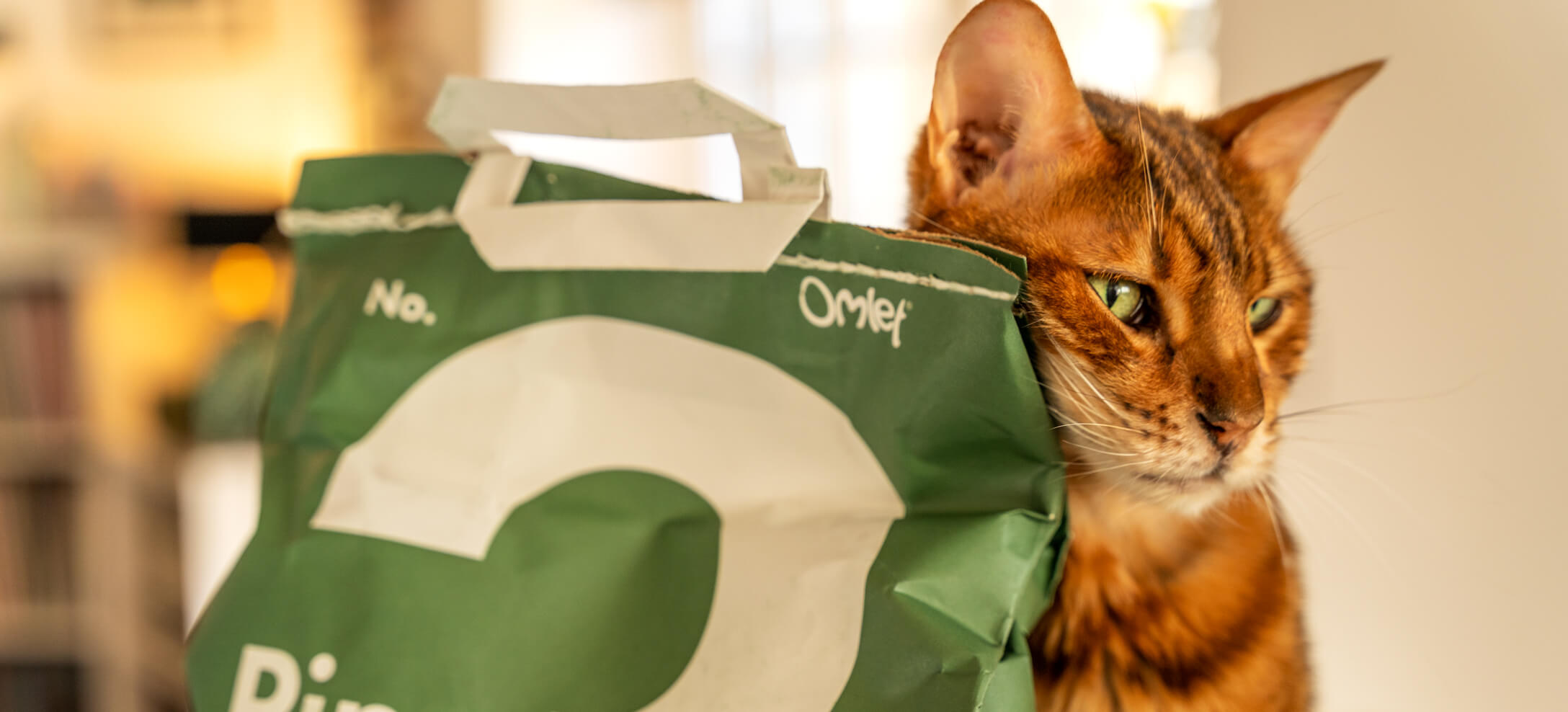 A Bengal cat sits by a green bag of cat litter