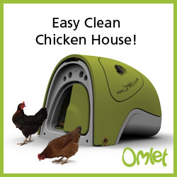 Easy Clean Chicken House!