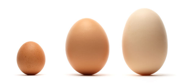 Small, medium and large eggs.