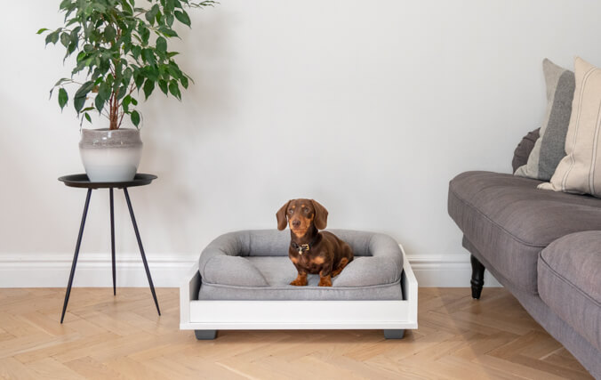 Use With the Fido Furniture Range for the Ultimate Sleep Setup