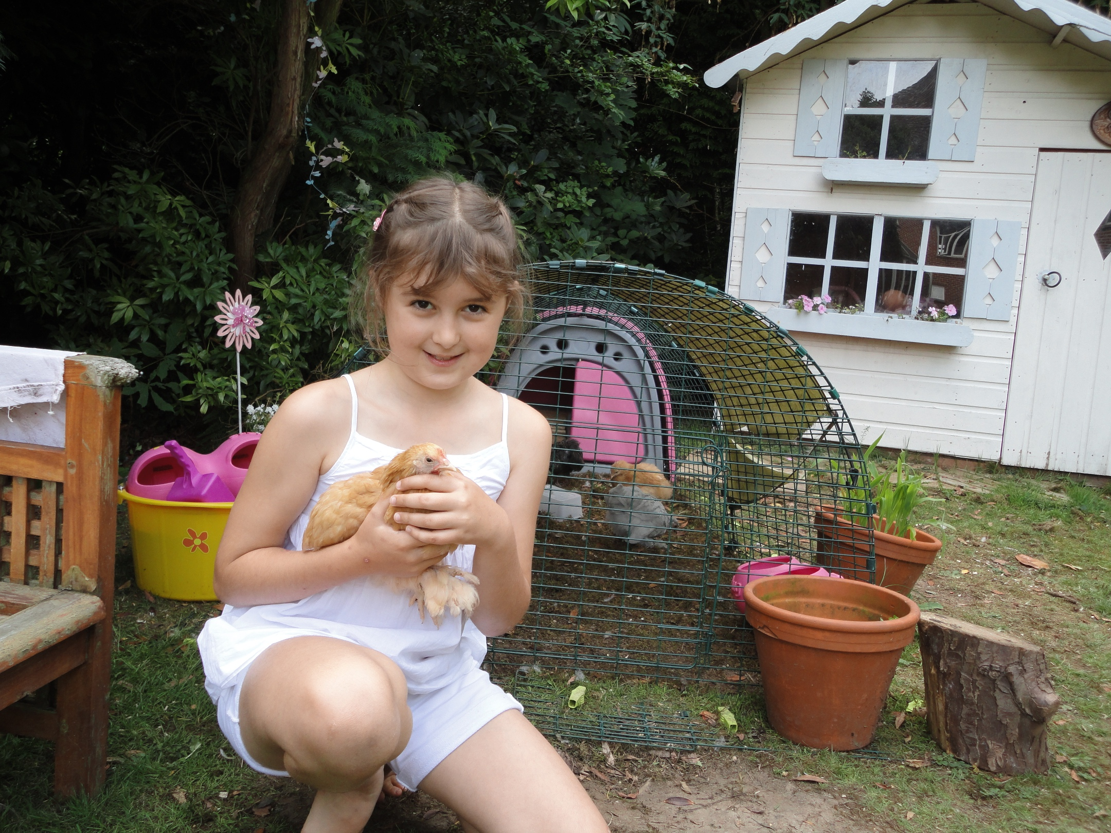 If your children handle your hens from chicks they will become very tame