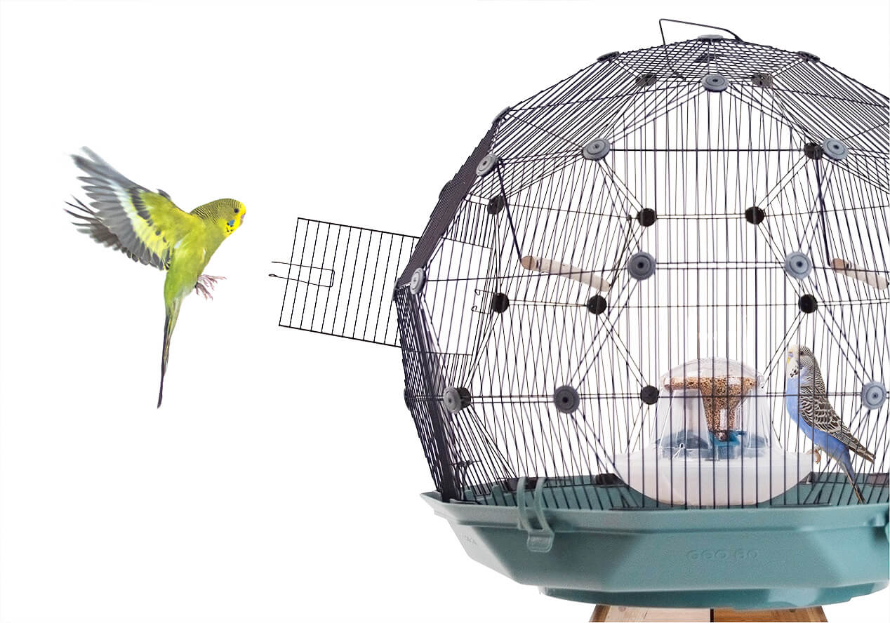 A yellow parakeet flies towards an open door of the Geo Bird Cage while a blue parakeet perches at the centrally located feed station inside the cage