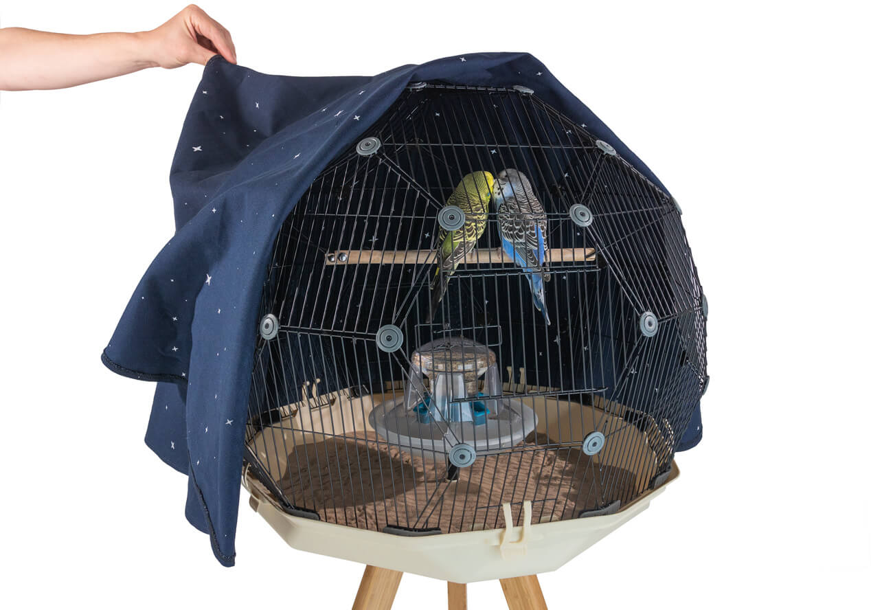 Two budgies on a perch within the Geo Bird Cage with the night cover peeled back half way