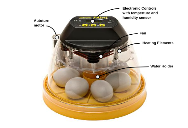 The basic components of an incubator.