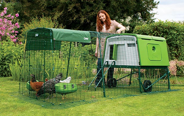 A woman in the backyard with a green Eglu Cube chicken coop