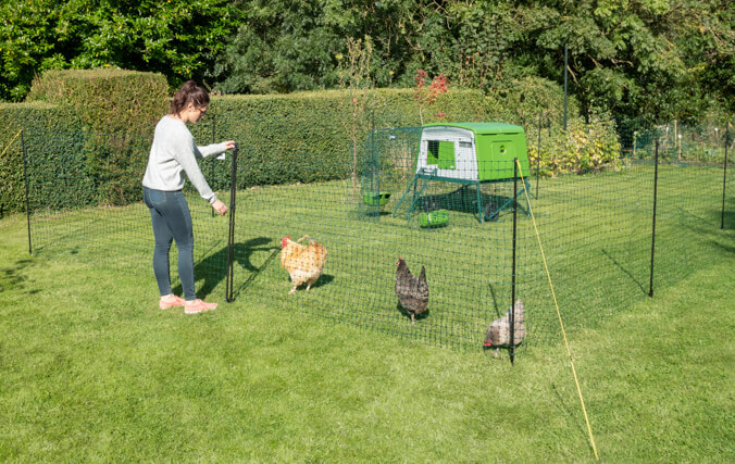 A stable style enclosure door lets you top-off food and drink or let your chickens out to free-range