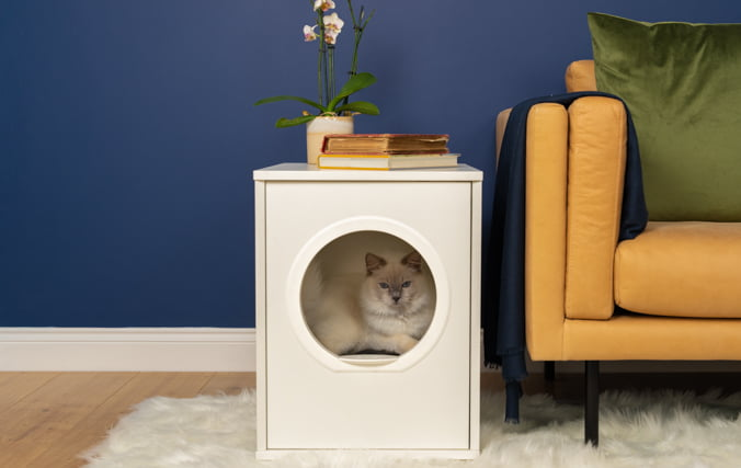 Stylish Modern Cat Bed Furniture with white cat inside That Looks Great in Your Home
