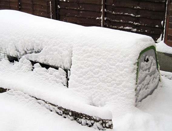 The warm and insulated Eglu Go chicken coop covered in winter snow.